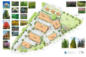 Landscape Arch Rendered Site Plan1